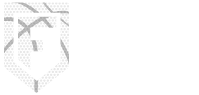 Fluid Motion Basketball